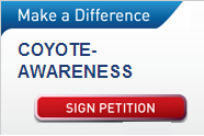 Petition for Coyote Awareness in Huntington Beach, CA!